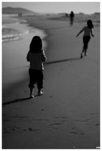 Corbes a la platja....