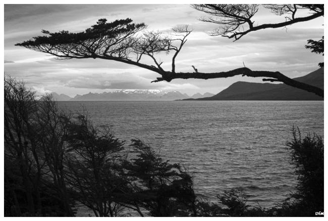 Estret de Magallanes