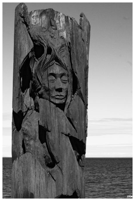 Estatua Mapuche