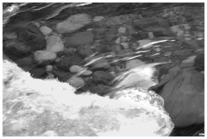 Pedres de riu